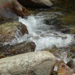Foto de Lodgepole Campground