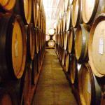 Barrels and Barrels of Yummy Cristom Wine