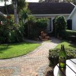Blick von der Terasse in die kleine Gartenanlage