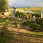 Photo of Jacaranda Wine and Guestfarm