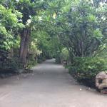 Landscape - Khum Phaya Resort & Spa, Centara Boutique Collection Photo