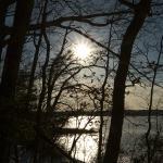 Foto di Quiet Waters Park