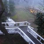 清晨 從客房陽台通往花園