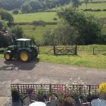 Hinam Farm Photo