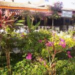 Nuestro hermoso jardín