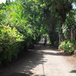 Billede af Mesaribali Homestay