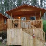 Cabin #11 Shady Rest Motel