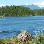 Tofino, another view