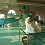Foto de Wintergreen Resort & Conference Center