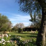 Foto de Centro Ippico Agrituristico del Sarrabus