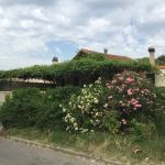 La terrasse du Potager de la Tour