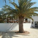 Foto de Barcelo Hydra Beach Resort