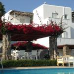 Foto de Roses Beach Hotel