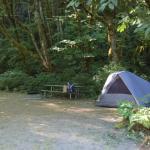 Tolt MacDonald Park & Campground