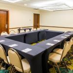 Tingui - meeting room