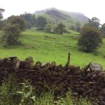 View out of the front door, onto Helm Cragg