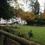an alternative garden view