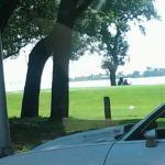 Foto de Navy Lodge Pensacola