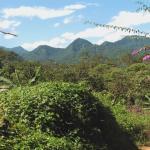 Mindo general landscape
