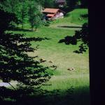 Alpenhotel Beslhof Photo