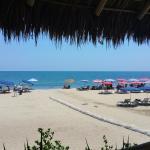Beach - Don Pedro's Restaurant & Bar Photo