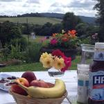 Breakfast table laid in the garden