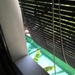 View of pool in courtyard thru window shade