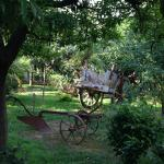 Foto di Hotel Residence Fattoria Stocchi