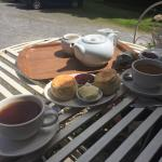 An excellent cream tea at Boeveys 4th July 2015