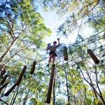 TreeTop Challenge High Ropes Course