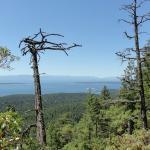 View from cabin at Manzanita Bluffs