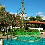 Pool Blick