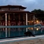 Photo de Hotel Mikro Village