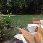 Breakfast with garden view