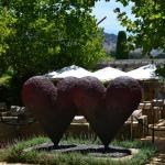 love the hearts in the garden