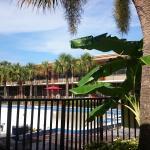 Vista de la piscina (en reparación en Junio)