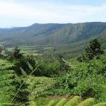 Scenery #views #landscape