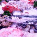 Dechant Fischladen & Restaurant