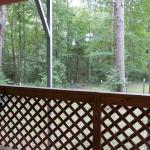 View from the Prowler RV deck overlooking forest