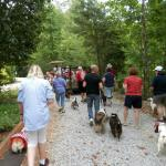 Fourth of July Puppy Parade