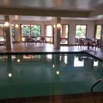 Nice clean pool...