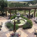 A view from one of the wineries.