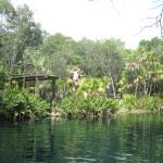 Jumping platform at Cenote Cristal