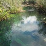 Sitting rope at Cenote Escadero