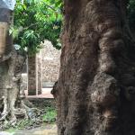 Jardines ancestrales