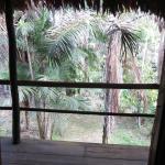 Foto de Amazon Explorama Lodges