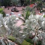 Foto de Marco Island Marriott Resort, Golf Club & Spa
