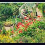 Foto de The Copper House - Portreath