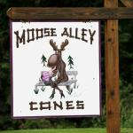 Moose Alley Cones