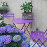 particolare giardino - angolo Relax